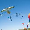 kite flying day