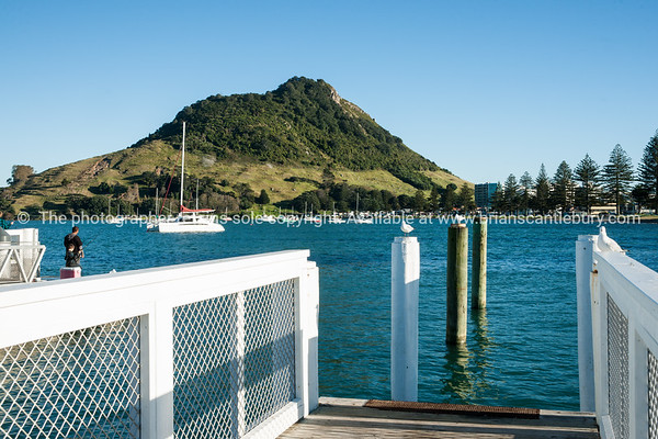 """Pilot Bay, Mount Maunganui-27 See;  <a href=""""http://www.blurb.com/b/3811392-tauranga"""">http://www.blurb.com/b/3811392-tauranga</a> mount maunganui landscape photography, Tauranga Photos; Tauranga photos, Photos of Tauranga Also see; <a href=""""http://www.brianscantlebury.com/Events"""">http://www.brianscantlebury.com/Events</a>"""