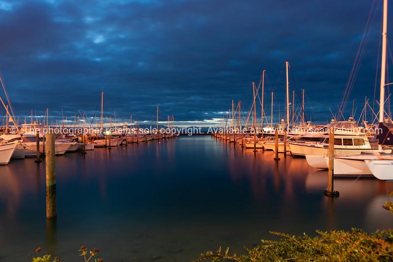 Rows of boats moored in Tauranga Marina at night