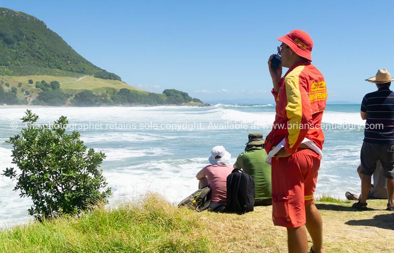 People on Moturiki watching big surf