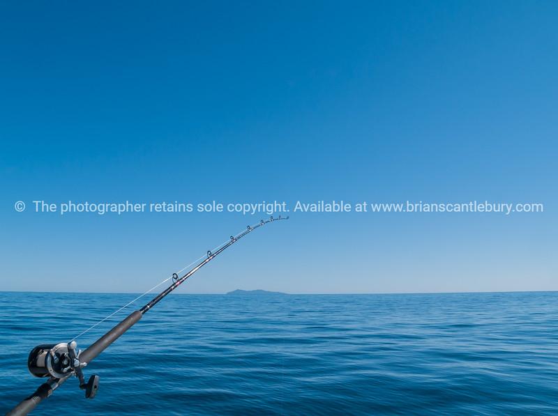 Fishing rod  & MAyor island.