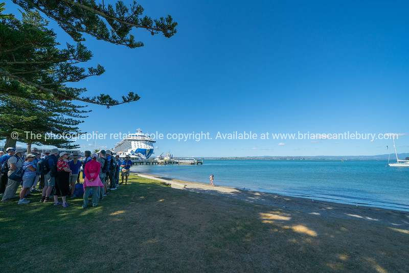 Group of cruise ship passengers stand in shade listening to tour guide