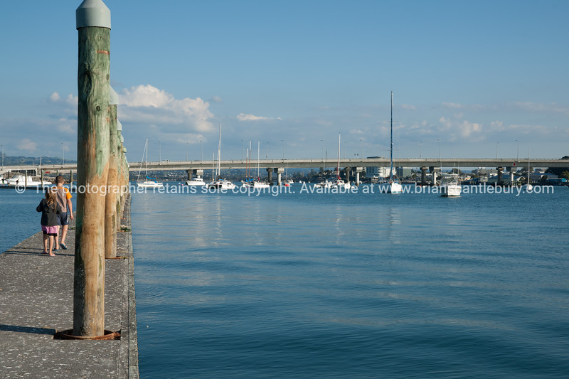 "Tauranga Bridge Marine to Harbour Bridge. See;  <a href=""http://www.blurb.com/b/3811392-tauranga"">http://www.blurb.com/b/3811392-tauranga</a> mount maunganui landscape photography, Tauranga Photos; Tauranga photos, Photos of Tauranga Also see; <a href=""http://www.brianscantlebury.com/Events"">http://www.brianscantlebury.com/Events</a>"