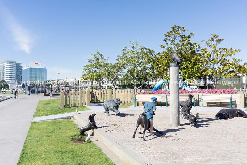 Tauranga waterfront public space & facilities.