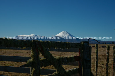 Mountains Ngauruhoe and Tongariro beyond the rural scene