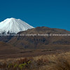 Mount Ngauruhoe beyond alpine landscape and vegetation