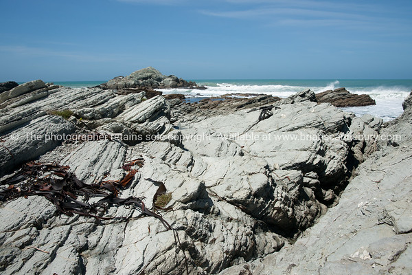 Tora rocky coastline. New Zealand image.