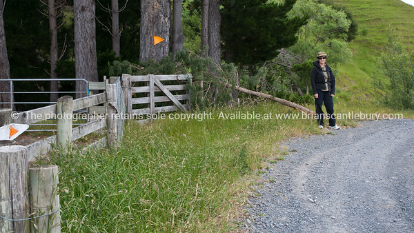 Start of Tora walk. New Zealand Image.