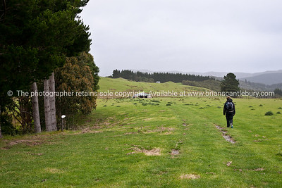Tora, the walk and land. New Zealand Image.