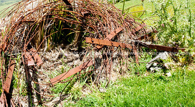 Tangled. Old rusty barbed wire and fencing.  New Zealand Image