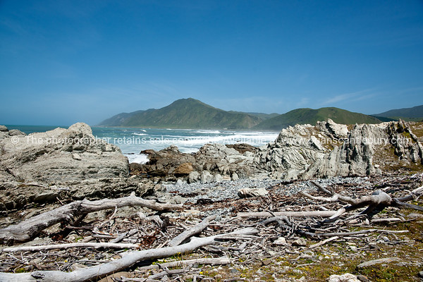 Tora rocky coastline. New Zealand image.