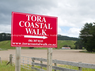 Tora Coastal Walk, Direction sign. New Zealand Image.