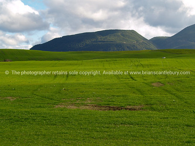 Gren field in front of rolling tree clad hills.