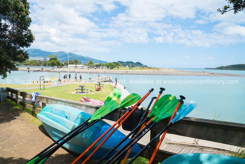 View of bay from between shady pohutukawa trees along harbor edge with kayaks and paddles in foreground.