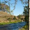 Te Waihou River flowing through rural countryside, Waikato.