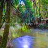 Pakoka River flowing through New Zealand natural bush to Bridal Fall in countyside outside Raglan on west coast North Island.