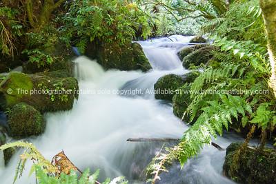 Waikato , Hamilton, New Zealand stock photography. South Pacific Images.