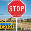 Stop sign at Morrinsville- tahuna intersection. Sunflowers by highway in Waikato