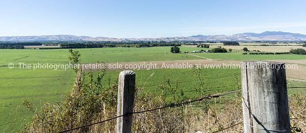 Landscape approaching Martinborough Wairarapa New Zealand