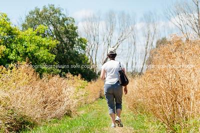 Boggy Pong Walk Lake Wairarapa New Zealand