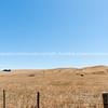 Dry drought affect farmland Wairarapa New Zealand.