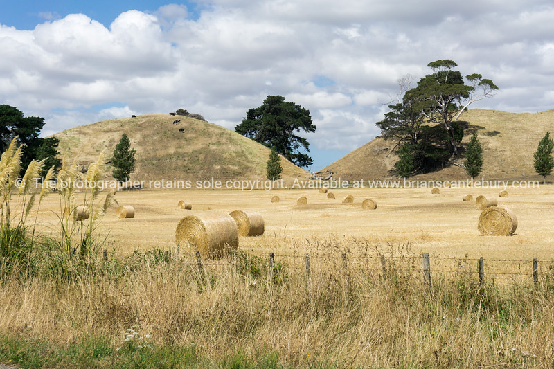 Farm land along road with roll of cut  and baled hay