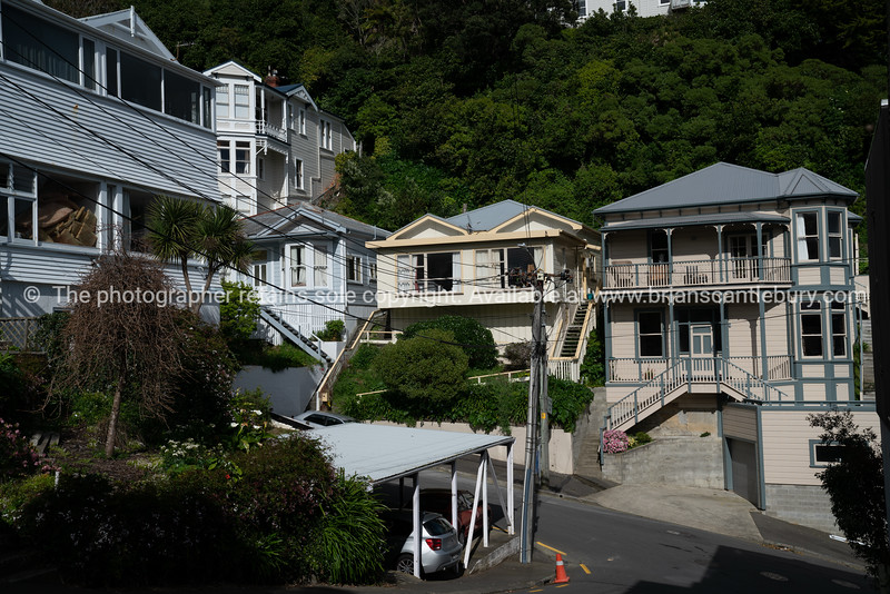 Mount Victoria fiews and homes
