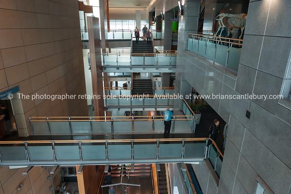 Inside Te Papa Museum Wellington