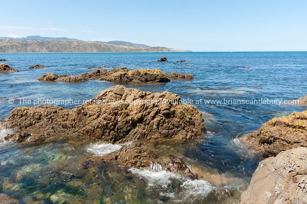 Rocky foreshore at Breaker Bay  at entrance to  Wellington Harbour
