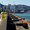 Old Wellington Wharf with yellow bollards