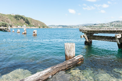 Old pier Shelly Bay Road Wellington