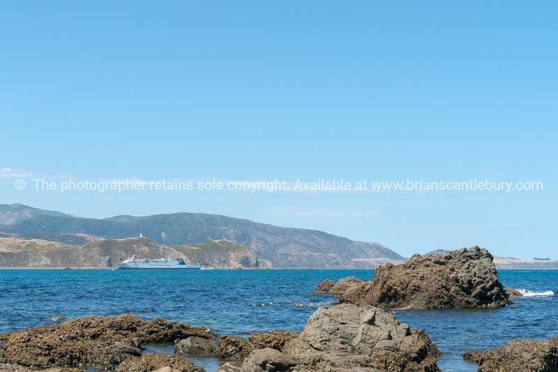 Interislander ferry enters harbour across from rocky foreshore at Breaker Bay  at entrance to  Wellington Harbour