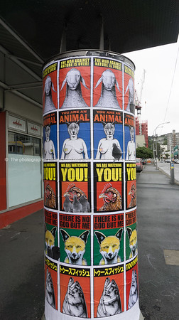 Billstickers Wellington