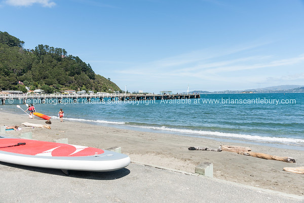 Summer day at Days Bay and wharf Wellington, New Zealand beach, people with beach equipment and long wharf