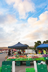 Lions Club of Titahi Bay Porirua Saturday Market