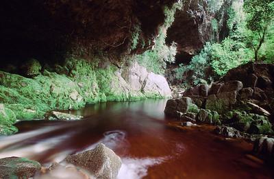 Limestone caves, Oparara River Reserve, South Island