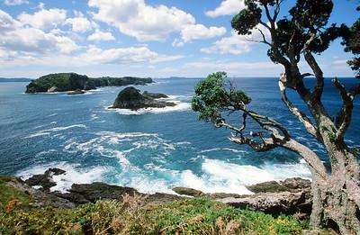 Hahei Beach, Coromandel Peninsula, North Island