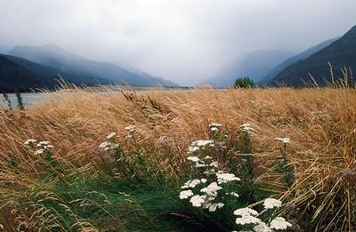 Waimakariri River Valley, Arthur's Pass, South Island