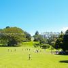 Auckland, Cornwall Park.