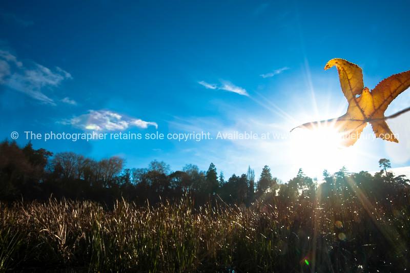 Cambridge lake