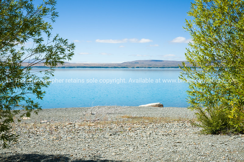 View through green trees across stony shore of Lake Pukaki.