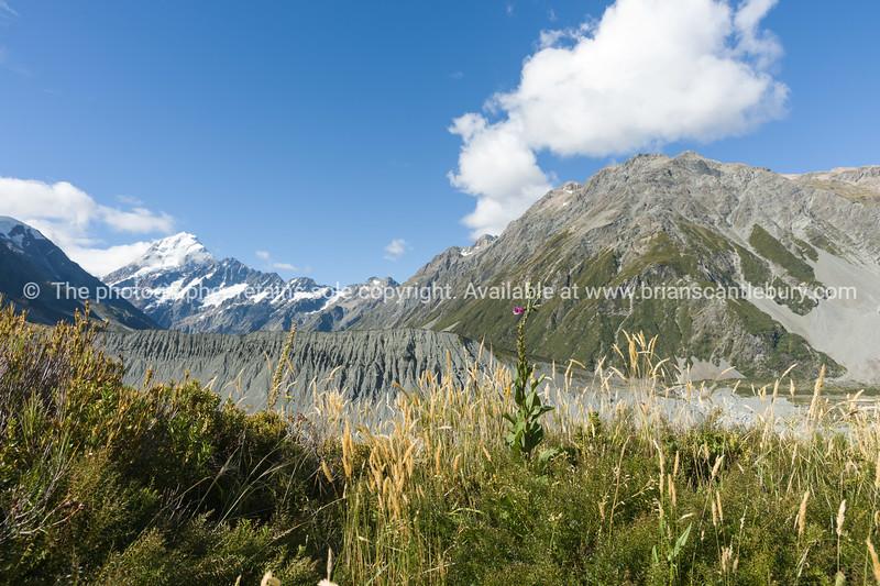 Aoraki-Mt Cook, plains and range.