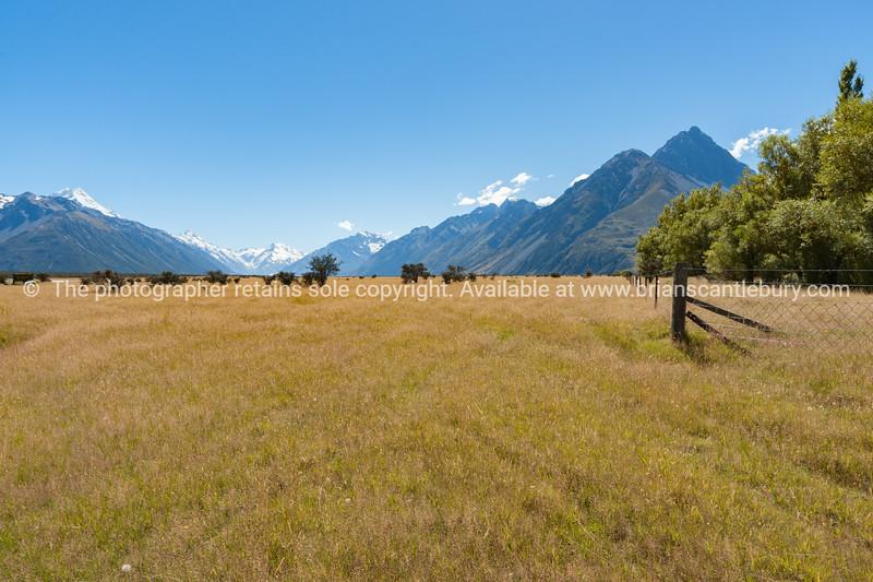 Golden flat farmland between Soutern Alps mountains