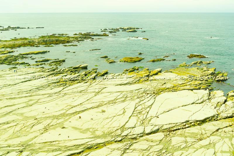 Wide flat mud-rock ledge extending into sea