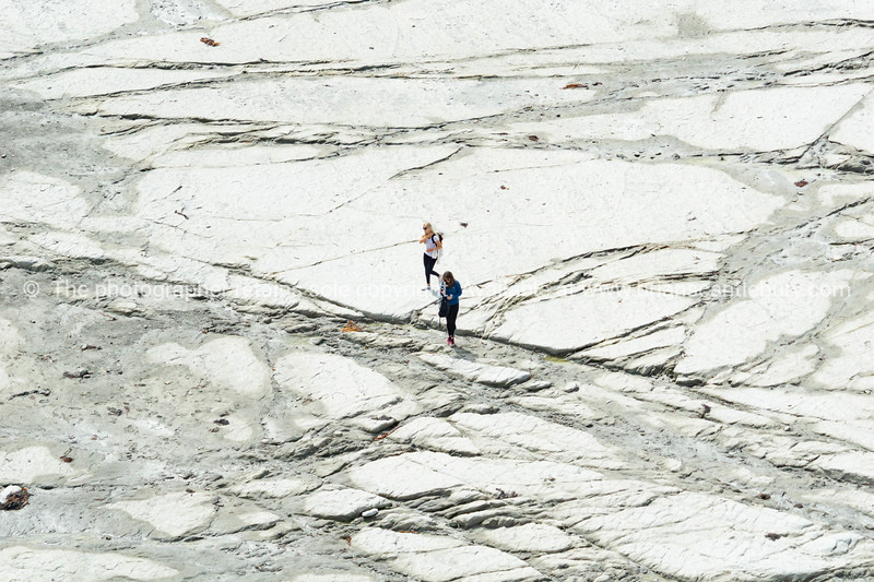 Two young women travelers in distance, walking on flat mud-rock ledge on Kaikoura coast
