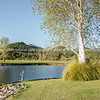 Golf course lake, Pauanui. Lakes Golf Resort. New Zealand images.