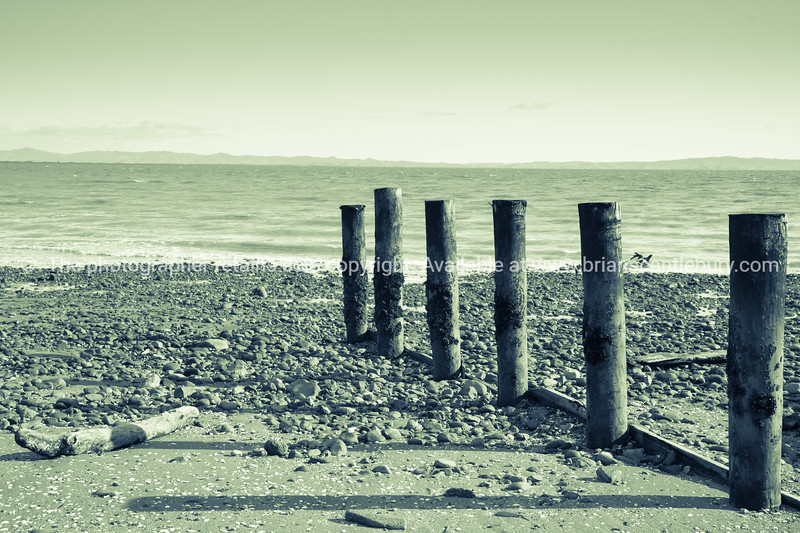 Tararu Beach, Thames, Coromandel. Vintage image.