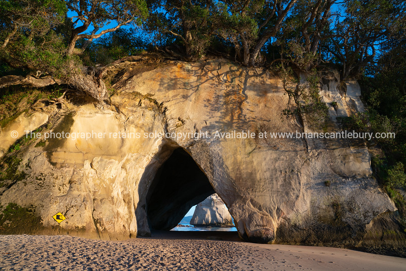 Sunrise at Cathedral Cove  on Coromandel Peninsula New Zealand