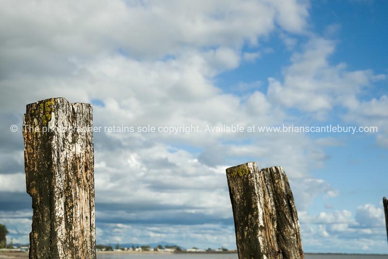 Tararu Beach, Thames, Coromandel.