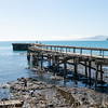 Old, disused Hicks Bay Wharf. New Zealand images.